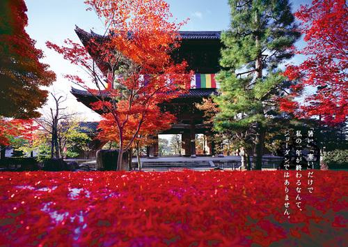 autumn_2010_01_img_001.jpg